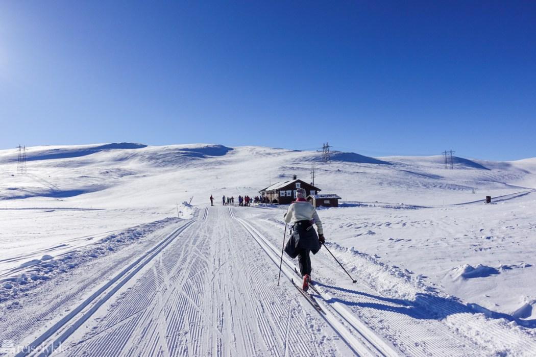 Skiturer over Hardangervidda er lett tilgjengelige fra Geilo