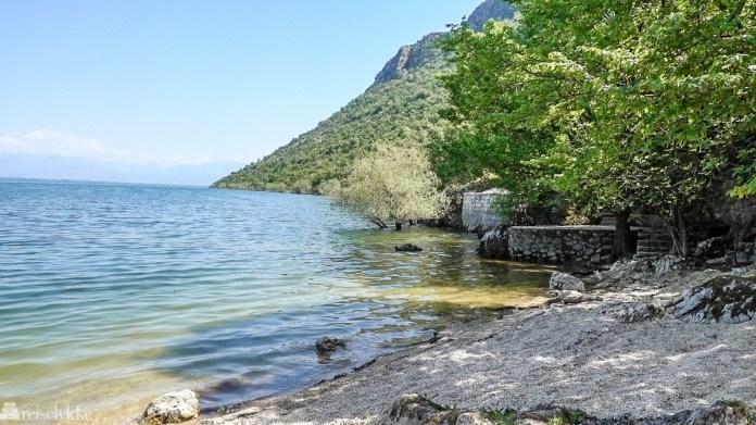 Strand ved Shkodërsjøen Montenegro