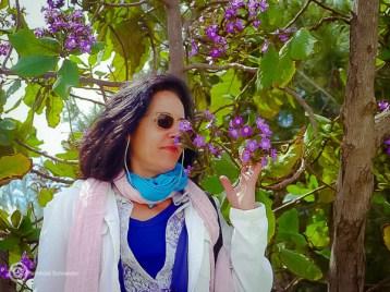 Olfaktorisch: Judasbäume blühen herrlich.