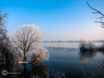 Im Zuflussbereich des westlichen Sees rasten Hunderte Vögel.