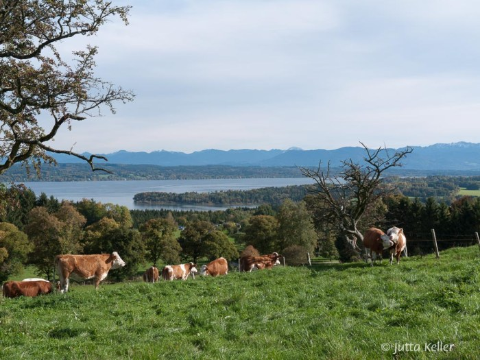 Ilkahöhe am Starnberger See