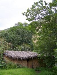 Die Hütte in der Oase
