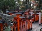 Fushimi Inari-Taisha boasts thousands and thousands of flamming torii (gates).