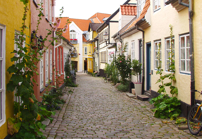 Altstadtflair mit Kopfstein und Stockrosen in Aalborg
