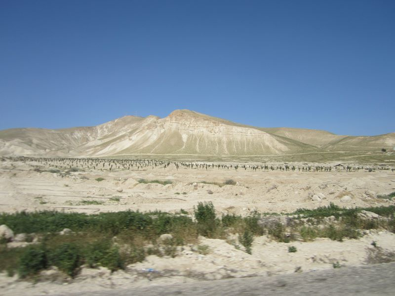 Wüste im Westjordanland