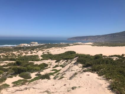 Blick über die Dünenlandschaft