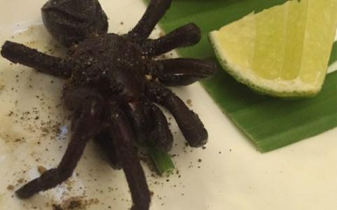 Tarantula eten in Cambodja