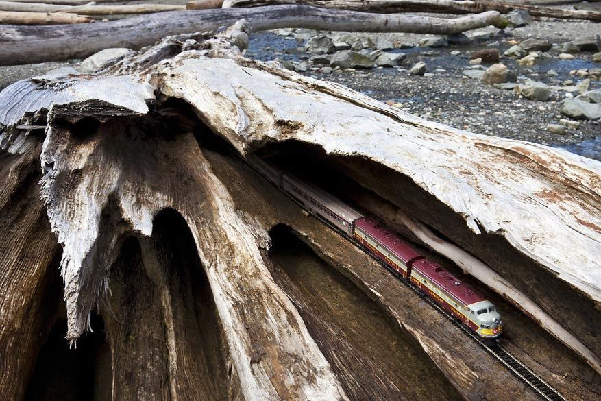 Driftwood, British Columbia