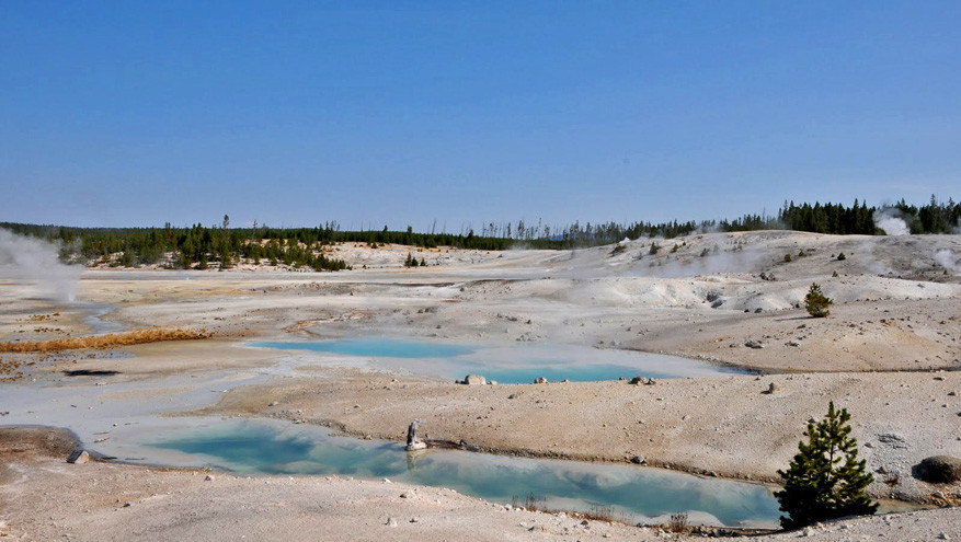 5-USA-Wyoming-Yellowstone-Park-29