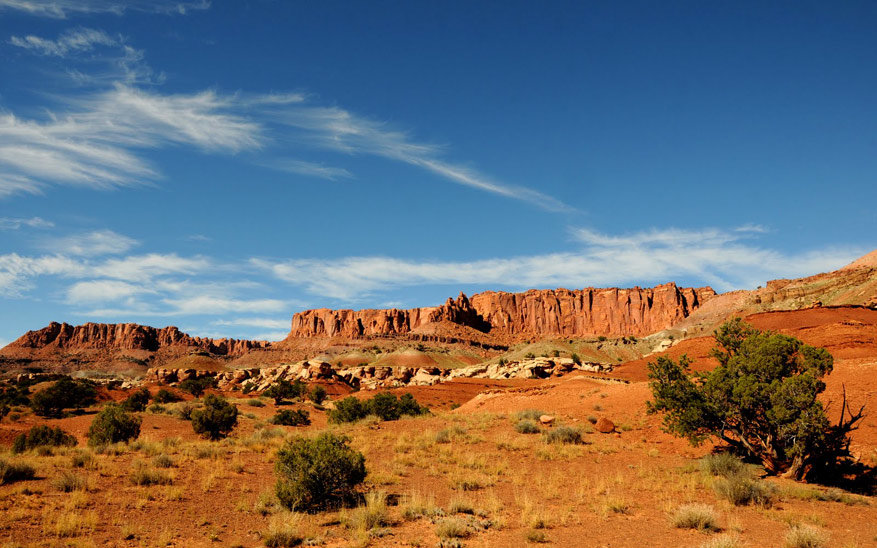 2-capitol-reef-np03