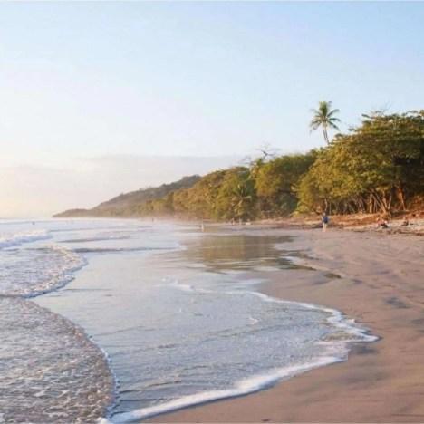 Reistip Colombia: doe een koffie tour in Salento!