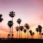 Sunset California Los Angeles