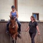 """Eindrücke vom Kurs """"Klassisch-barocke Reiterei mit Andrea Schmitz"""" vom Juli 2019 - Foto: Ursula Klarmann"""