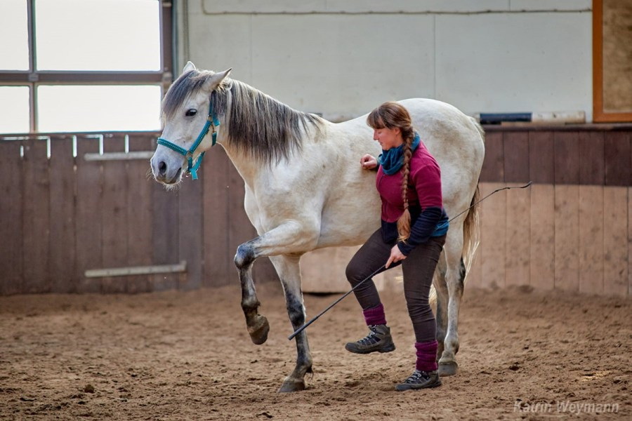 Zirkuskurs - Foto: Katrin Weymann