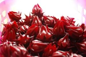 teh-bunga-rosella