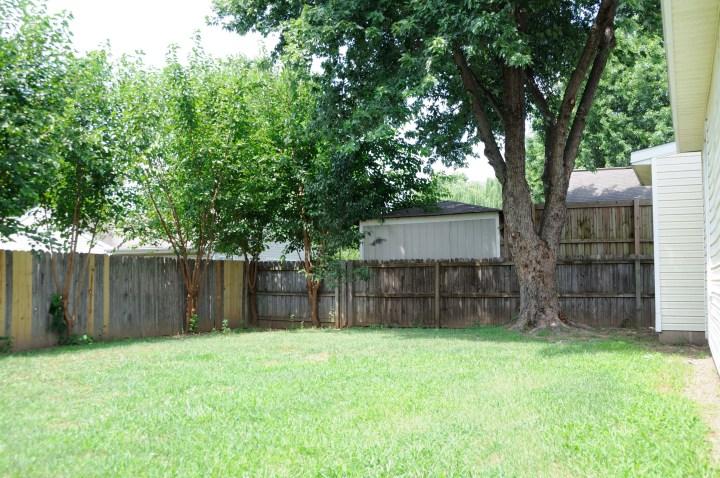 backyard 5 after