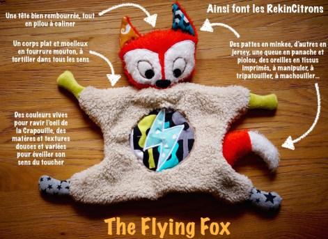 Flying Fox 3