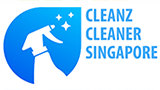 Cleaning Cleaner Singapore 1