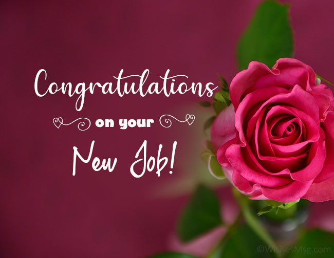 new job wishes image4