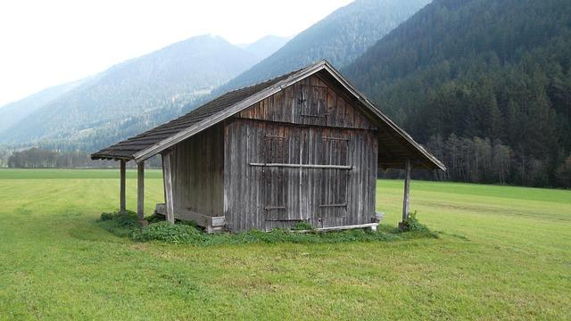 cabaña photo