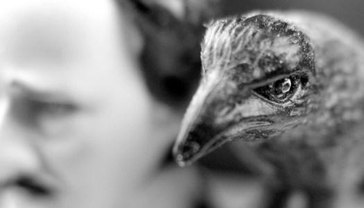 El cuervo de Edgar Allan Poe, leído por Neil Gaiman