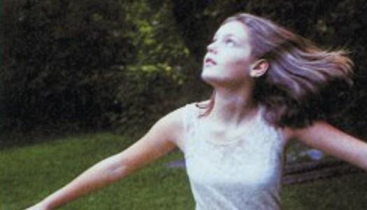 Las vírgenes suicidas: una novela desde el recuerdo