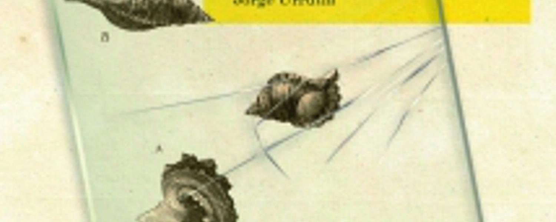 el despertar, kate chopin, marmara ediciones