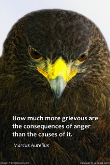 17 Relax and Succeed - How much more grievous are the consequences of anger