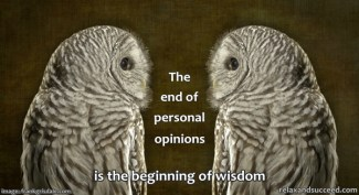 RS - Blog Quote - Frank Grisdale Teddy the Barred Owl