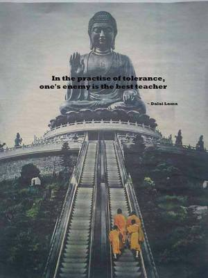 269 Relax and Succeed - In the practice of tolerance