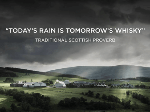 412 Relax and Succeed - Today's rain is tomorrow's whisky