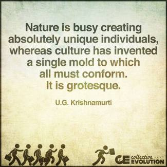 708 Relax and Succeed - Nature is busy