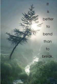 817 Relax and Succeed - It is better to bend