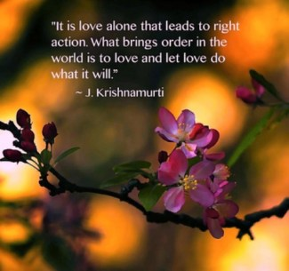 891 Relax and Succeed - It is love alone