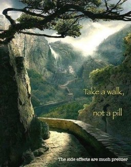 907 Relax and Succeed - Take a walk