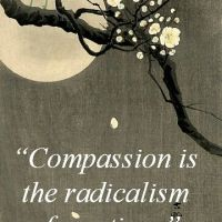The Friday Dose #136: A Season of Compassion