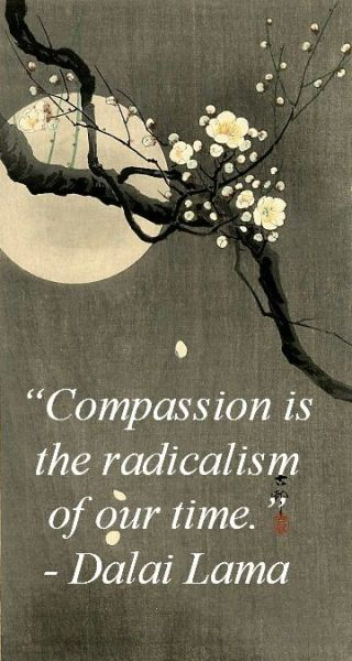 1053-fd-relax-and-succeed-compassion-is-the-radicalism