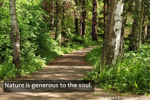1312 Relax and Succeed - Nature is generous to the soul