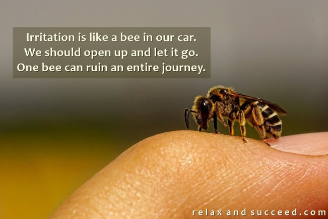 1463 Relax and Succeed - Irritation is like a bee