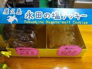 売り物の塩クッキーと塩チョコクッキーの写真
