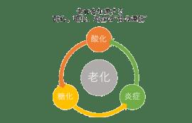 老化を加速する負の連鎖のイラスト