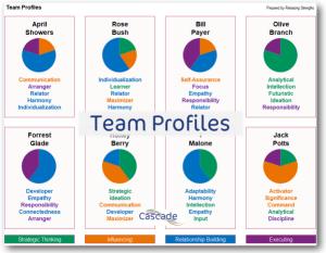 Team Profiles in Cascade