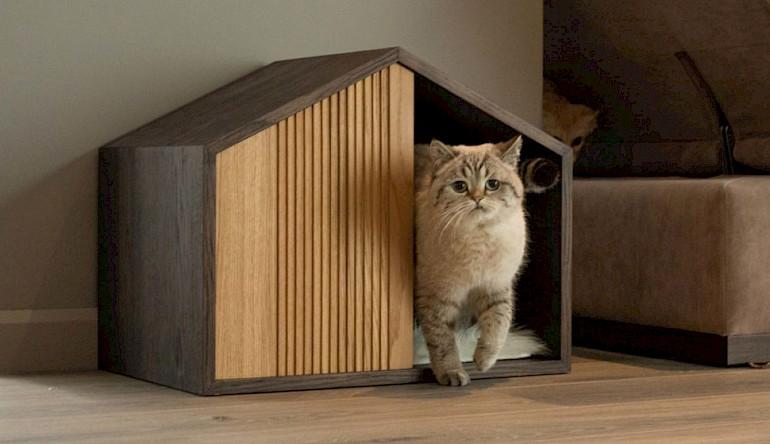 Træhus til kat