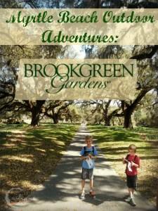 Myrtle Beach Outdoor Adventures: Brookgreen Gardens
