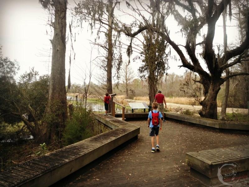 Lowcountry trail Brookgreen Gardens