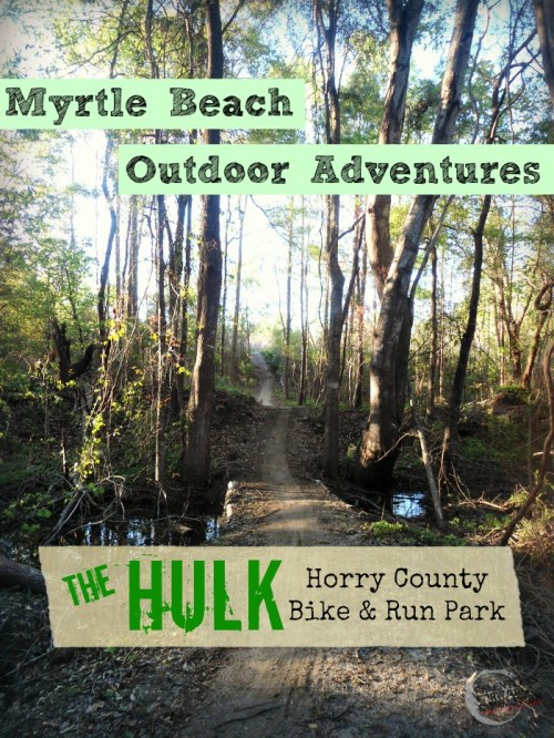 The Hulk Trail Myrtle Beach pin