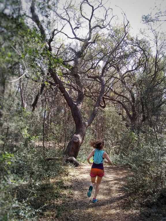 Trail Running in Myrtle Beach - a Complete Guide  - Huntington Beach State Park