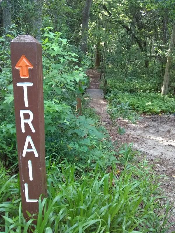 Trail Running in Myrtle Beach - Myrtle Beach State Park