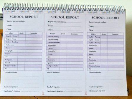 Role Play Teacher Pack - School Report