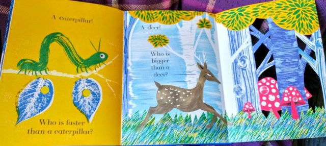 Animalphabet book
